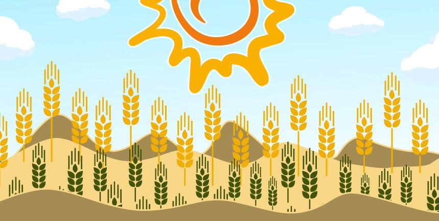 Kredyt suszowy dlarolników - zabezpieczenie uprawy przed kataklizmem. HabzaFInanse - wiedza okredytach dlarolników.